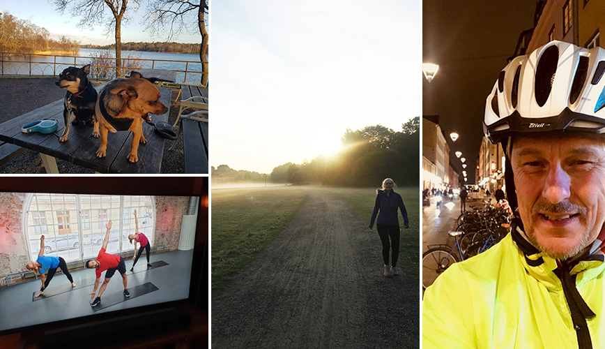 Photo collage of two dogs, gym session on TV, a woman in nature and a man in a bicycle helmet.